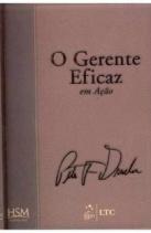 o_gerente_eficaz_em_acao_hsmltc